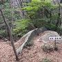 石割 壇香梅