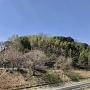 遠景(東側から)