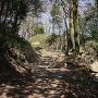 登城路に残る石垣
