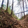 本丸と辰巳の櫓の堀切◆北城
