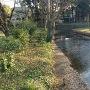 水城公園東側の外堀跡