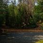白蛇堀と本丸跡地の入り口