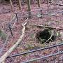 吉野口側の侍屋敷群の井戸