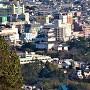 小田原城を望む