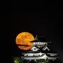 犬山城とフラワームーン