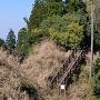 堅志田城 1郭から見た2郭