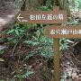 松田左近の墓分岐[提供:飯南町観光協会]