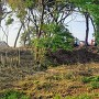 千布城 館林の土塁