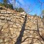 三の丸南側の石垣