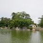二の丸 花菖蒲園付近から神戸櫓跡を見る