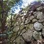 本丸櫓台背後の石垣