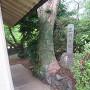 忠霊塔にある石碑