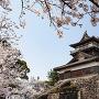 丸岡城[提供:Kenichi Fukushima / Adobe Stock]