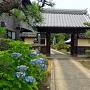 松の丸裏門