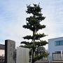 松山陣屋跡碑