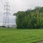 和泉城 城址遠景(南東より)