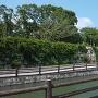 県道沿いの石垣
