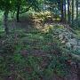 郭1から郭3にかけて延びる登り石垣的な痕跡