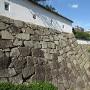伏見櫓下の長く続く石垣