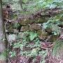 登城途中の石積