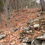 秋吉砦・竪堀に沿う石積