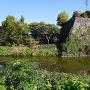 水堀とそびえ立つ石垣