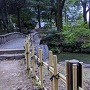 下茶屋公園の池