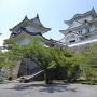 上野公園広場から見上げる天守閣