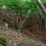 みさか道(河口湖側)から竪堀を見上げる