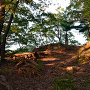 夕陽の躑躅が崎亭跡