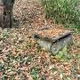 石組古井戸跡