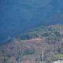 真田本城を望む(枡形城より)