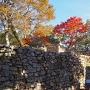 後曲輪石垣と紅葉
