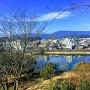 三の丸より城下の球磨川を望む