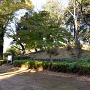 本郭跡 (栃木城址公園)