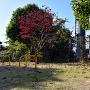 城跡碑 (やはた公園)