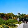 秋めく大阪城公園