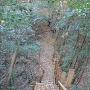 Ⅲ郭奥の空堀と土橋