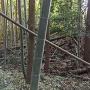 本郭土塁と空堀