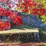 紅葉と六段壁
