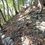 郭3の緑泥片岩による石積