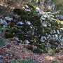 山王丸の苔むした石垣