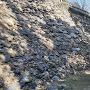 本丸(唐沢山神社)下の高石垣