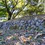 蔵屋敷石垣