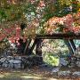 秋の東門跡
