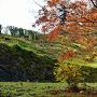 御主殿下の石垣と紅葉