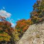 石垣と色づき始めた紅葉