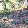 古井戸跡の近くにある石