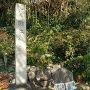 石碑と案内板(2017新春)