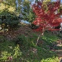 土塁(英賀神社の北側)